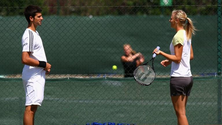 """""""Mind of a Champion"""": Djokovic on good friend Sharapova's retirement"""