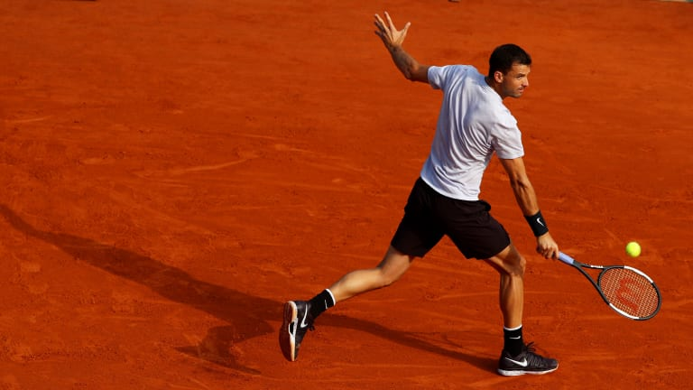 Dimitrov to be coached by Stepanek at Rome, French Open